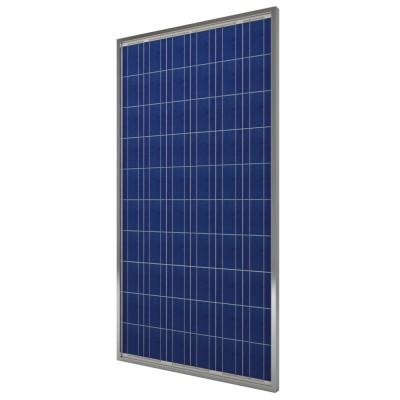 Suntellite ZDNY-240P60